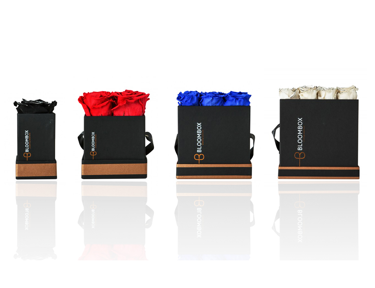 bloomboxpackagingdesign3